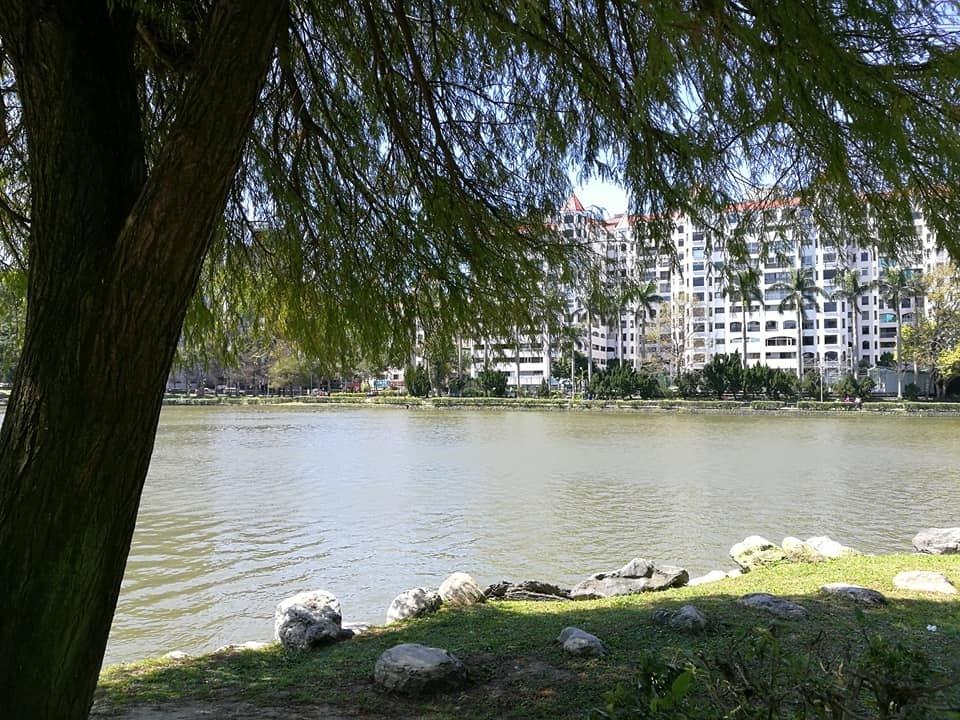 碧湖公園5.jpeg